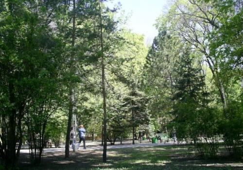 732_tualsky-park-moldova